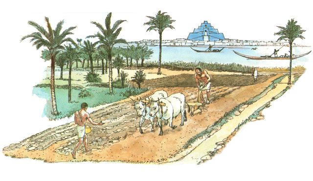 farming fundamental to ancient societies in central america Pre-columbian civilizations: pre-columbian civilizations, the aboriginal american indian cultures that evolved in mesoamerica (part of mexico and central america) and.